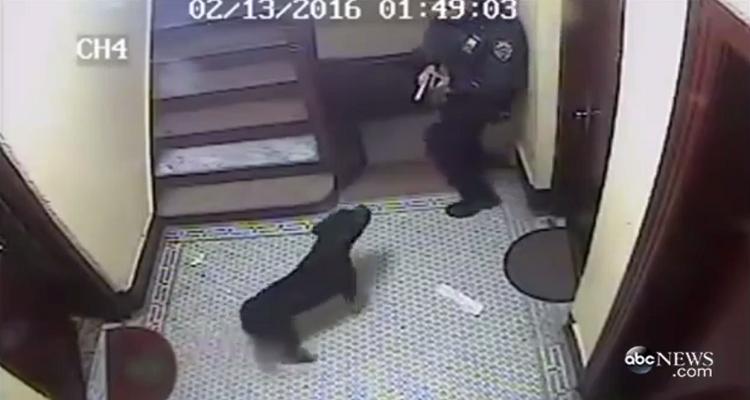POLÍCIA MATA CÃO INOFENSIVO