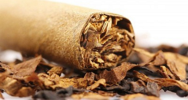 gnr-apreende-48-toneladas-tabaco