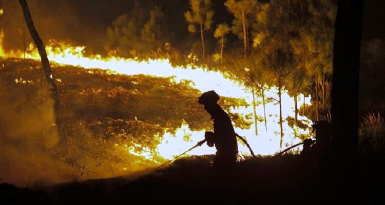 Dois bombeiros feridos em Celorico da Beira
